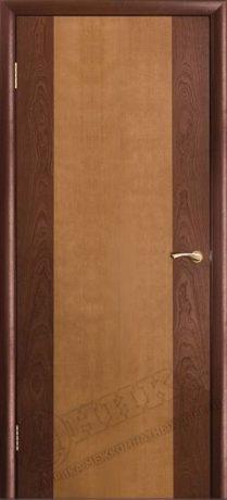 Фото дверь КОМБИ