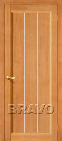 Фото дверь Вега-19